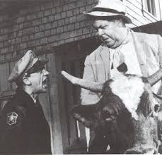 Otis riding a cow. Source: Mayberry.wikia.com