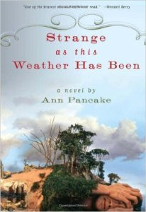 Ann Pancake's book, Strange as this Weather Has Been. Source: Amazon.com