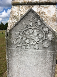 On the north and south sides of Dr. Wilson's headstone. It looks like ivy, or perhaps, dogwood.