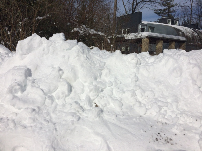 My neighbor's house is behind that big pile of snow, which is over my head.