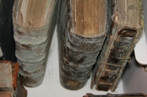 Moldy books prior to cleaning. This was taken at Emory University. Source: Emory University.