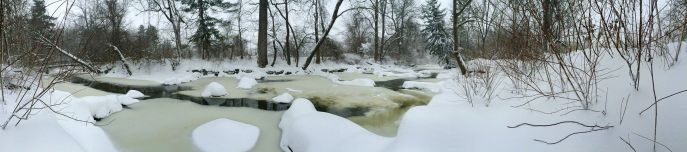 Rock Creek Park. We took a hike about 10 am this morning. Another foot of snow is on the way; it was knee-deep.