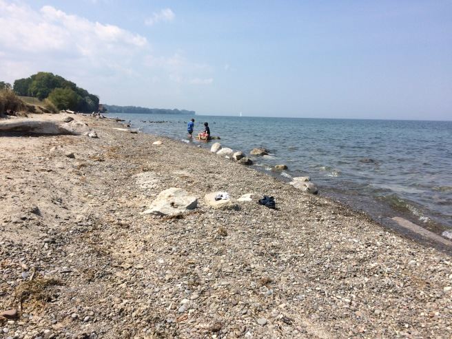 My sons playing on the rocky beach of Lake Ontario.